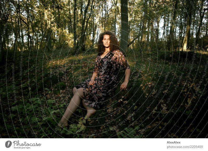 Die Menschen im Wald schön Leben Wohlgefühl Junge Frau Jugendliche 18-30 Jahre Erwachsene Landschaft Sommer Herbst Schönes Wetter Baum Moos Kleid Barfuß brünett