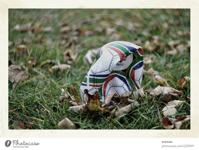 Die Luft ist raus Ballsport Fußball Natur Pflanze Herbst Gras Blatt kaputt platt Farbfoto Gedeckte Farben Außenaufnahme Nahaufnahme Menschenleer Tag