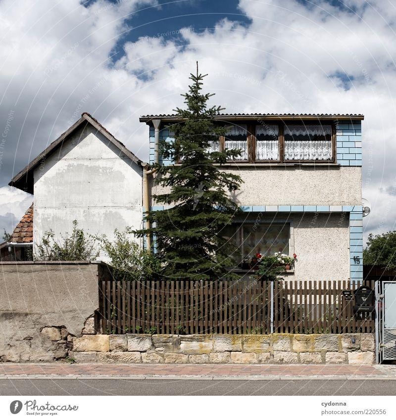 Tanne im Vorgarten Lifestyle Wohlgefühl Zufriedenheit ruhig Häusliches Leben Umwelt Himmel Garten Dorf Einfamilienhaus Fassade ästhetisch einzigartig