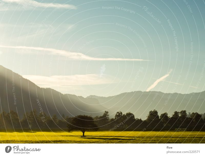herbstmorgen Natur Himmel Baum Sonne Pflanze Blatt Wolken Ferne Wald kalt Wiese Herbst Gras Berge u. Gebirge Landschaft Stimmung