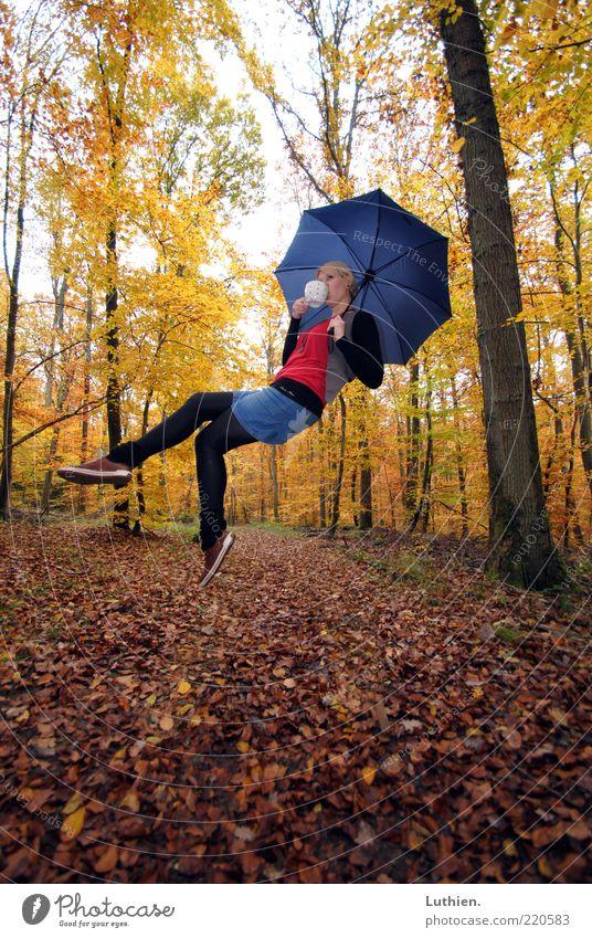 Kaffeekränzchen Mensch feminin Junge Frau Jugendliche Erwachsene 1 Umwelt Pflanze Herbst Wald fliegen trinken außergewöhnlich blond blau mehrfarbig gelb gold
