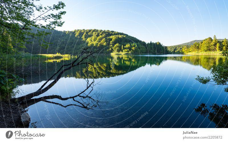 spiegelglatter See mit Ast und Bäumen Erholung ruhig Natur Wasser Baum Wald natürlich achtsam Kroatien Glätte Baumstamm energie tanken auftanken kraft sammeln