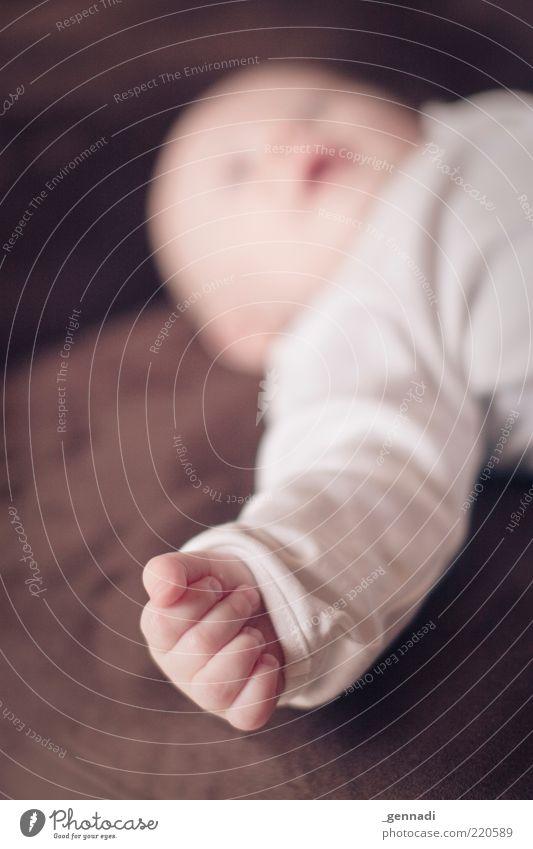Finger Mensch Hand schön Leben Junge klein braun Kindheit Baby liegen maskulin Zukunft niedlich weich Warmherzigkeit