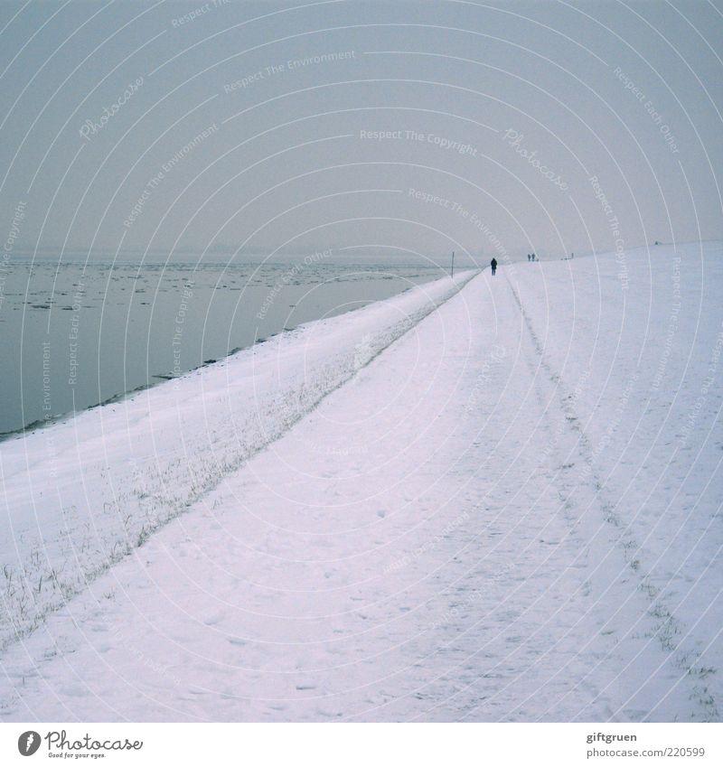 winter Umwelt Landschaft Wasser Himmel Winter Klima Wetter Nebel Schnee Küste Nordsee gehen kalt grau Endzeitstimmung Spaziergang Mensch Spazierweg Deich Eis