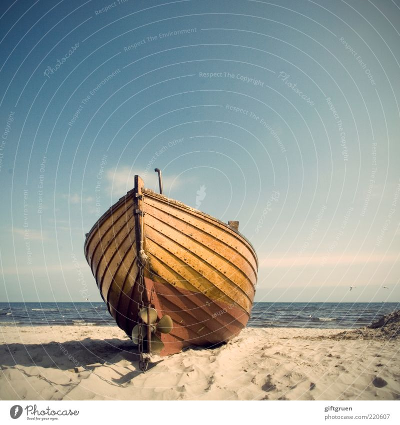 strandgut Umwelt Natur Landschaft Urelemente Sand Wasser Himmel Schönes Wetter Wellen Küste Strand Ostsee Meer Fischerboot alt Strandgut Wasserfahrzeug
