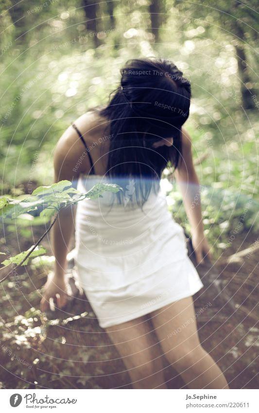 Mielikki feminin Junge Frau Jugendliche 1 Mensch 18-30 Jahre Erwachsene Natur Wald braun grün Schüchternheit langhaarig dunkelhaarig schwarzhaarig Sommerkleid