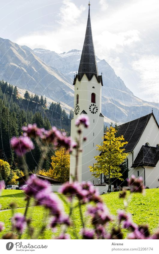 Kirche Tradition Schönes Wetter Blume Berge u. Gebirge Dorf Kirchturm Dorfkirche schön Spitze rosa weiß Zufriedenheit Romantik Glaube Religion & Glaube Idylle