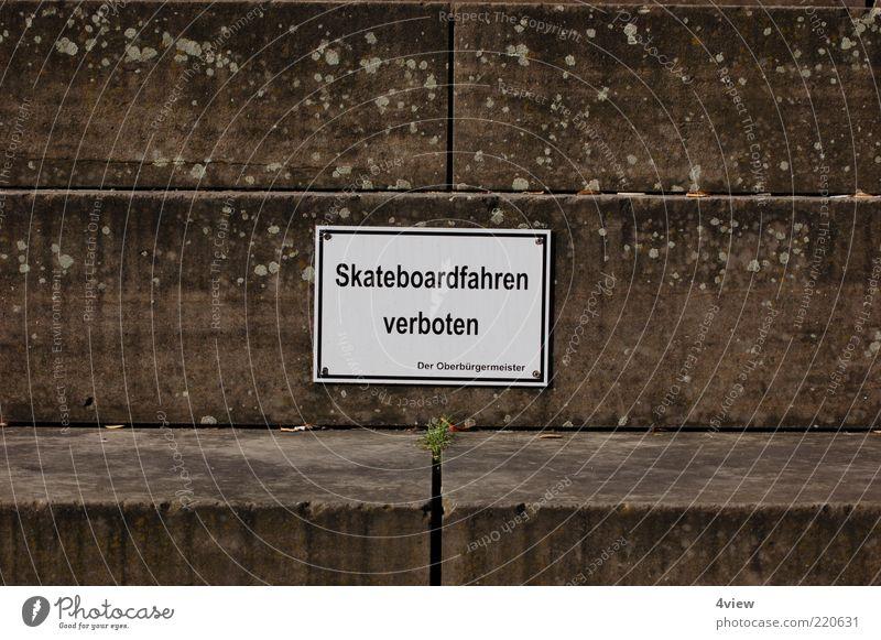 auch mit ohne skateboard auf die Fresse fliegen Treppe Schilder & Markierungen Verbote Außenaufnahme Zentralperspektive Steintreppe Verbotsschild Skateboarding