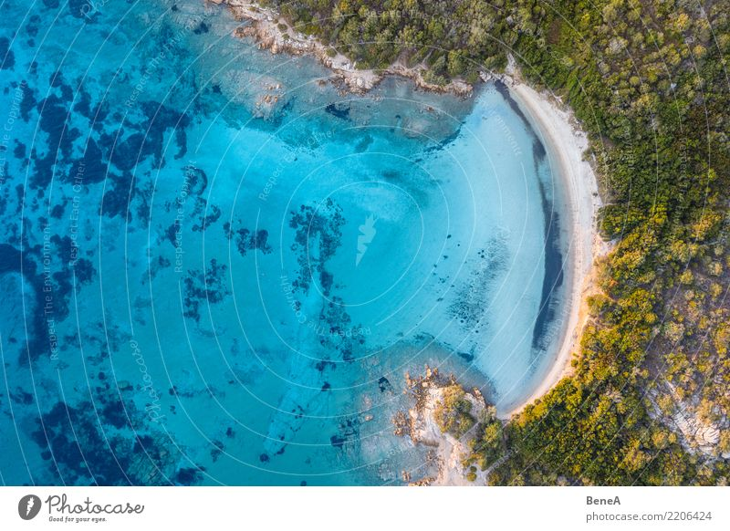 Einsame Bucht mit weißem Sand Strand und türkisem Meer von oben Natur Ferien & Urlaub & Reisen Sommer Wasser Sonne Erholung Ferne Küste Tourismus Freiheit