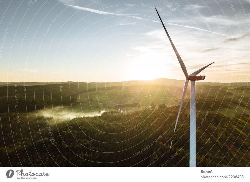 Windkraftanlage in einem Wald bei Sonnenuntergang von oben Himmel Natur Landschaft Umwelt Wachstum Energiewirtschaft Kraft Technik & Technologie Perspektive
