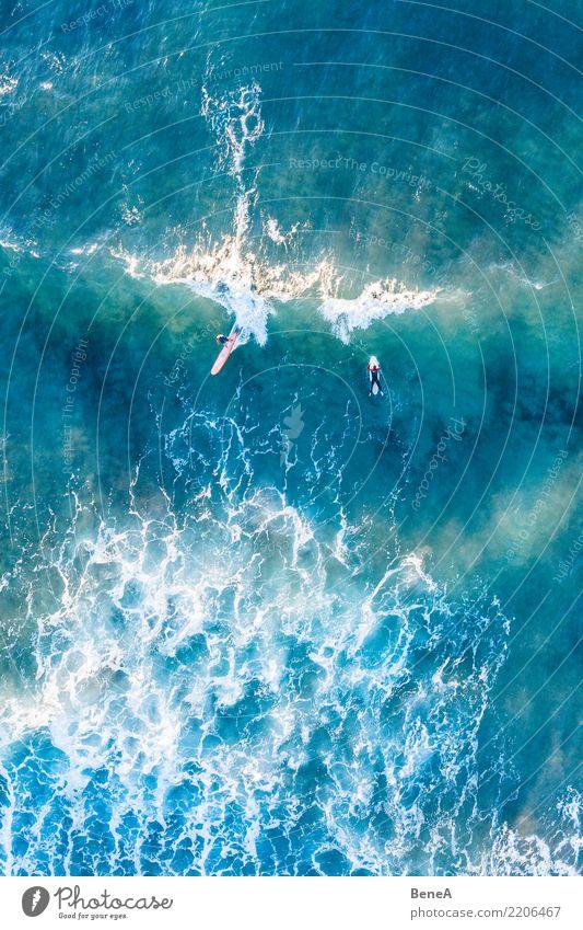 Surfer reiten Wellen im türkisblauen Meer Natur Ferien & Urlaub & Reisen Sommer Wasser Sonne Erholung Freude Ferne Strand Sport Tourismus Freiheit