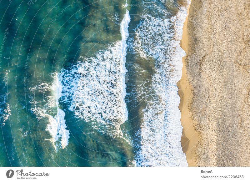 Surfer's paradise Erholung Sommer Sommerurlaub Sonne Sonnenbad Strand Meer Insel Wellen Schwimmen & Baden Natur Landschaft Sand Wasser Küste Seeufer Bucht