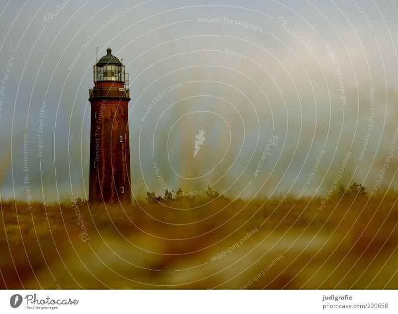 Weststrand Umwelt Natur Landschaft Pflanze Himmel Gras Küste Ostsee Meer Darß Menschenleer Leuchtturm groß natürlich Stimmung Navigation Farbfoto