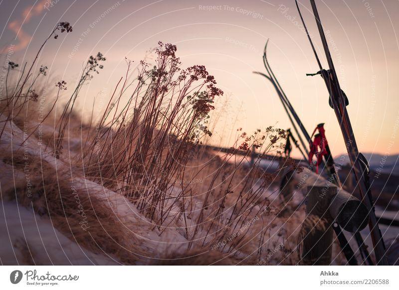 Morgenluft, Winter, Kälte, Norwegen, Skiurlaub, Sonnenaufgang harmonisch ruhig Ferien & Urlaub & Reisen Ausflug Abenteuer Wintersport Skifahren Natur Eis Frost