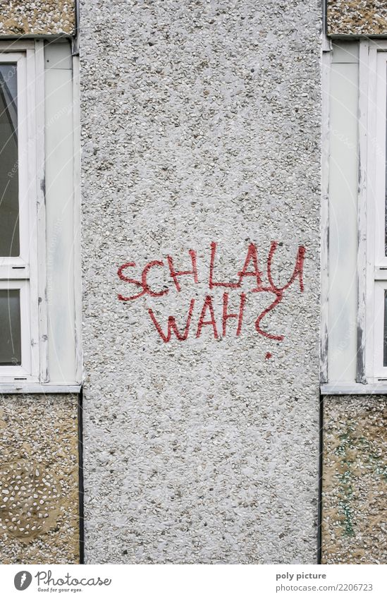 Graffiti-Schriftzug an einer Schule in Frankfurt (Oder) Stadt Freiheit Stein Deutschland Erfolg lernen Studium Jugendkultur Schulgebäude Ziel Bildung