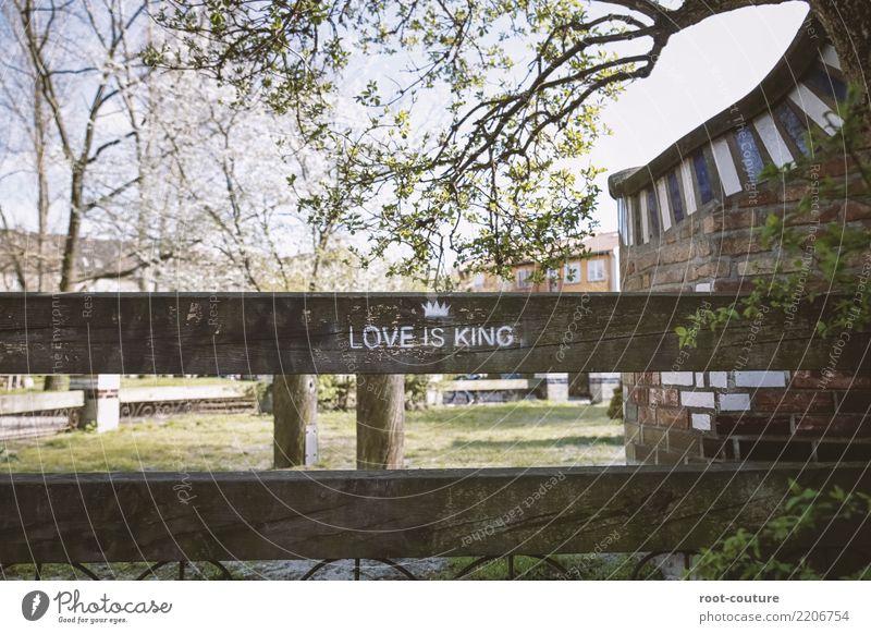 Love is King Pflanze Baum Freude Graffiti Liebe Gefühle Holz Gras Glück Ausflug Zufriedenheit Schriftzeichen Kommunizieren genießen Fröhlichkeit Schönes Wetter