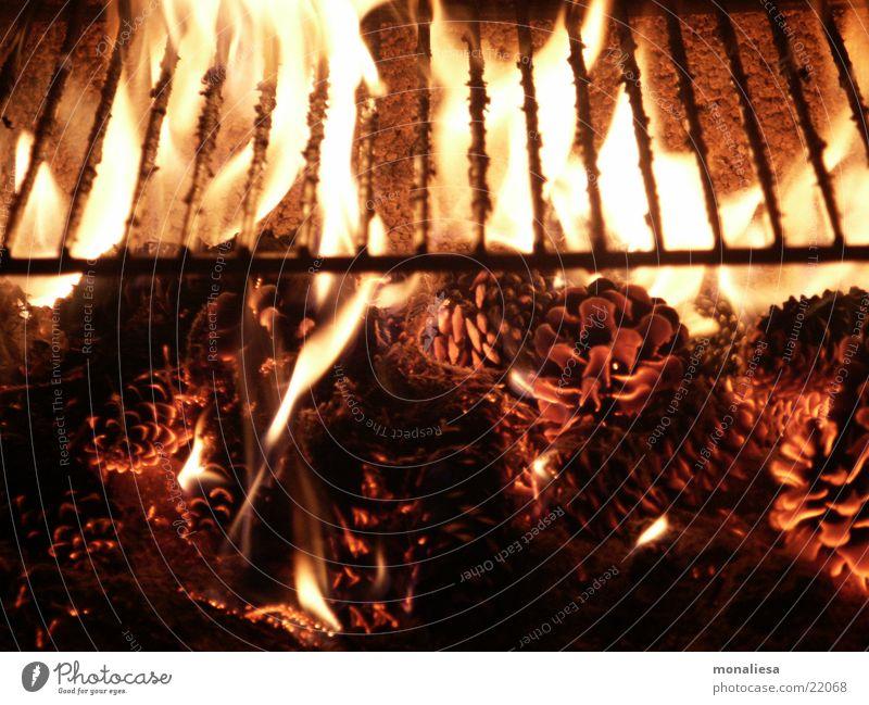 Glühende Zapfen Grill Glut Rost Brand Flamme Geruch Kiefernzapfen Nahaufnahme glühen glühend heiß