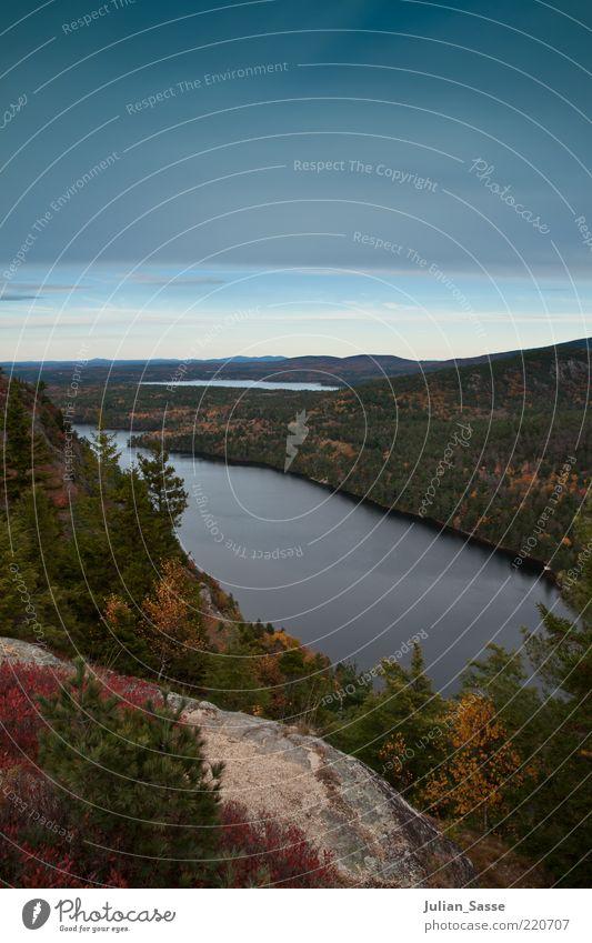 Indian Summer ? Umwelt Natur Landschaft Pflanze Urelemente Luft Wasser Himmel Wolken Horizont Herbst Baum Grünpflanze Wildpflanze ästhetisch Kanada See