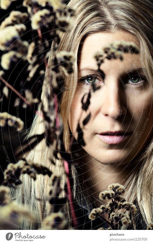 natural beauty schön Gesicht feminin Junge Frau Jugendliche 18-30 Jahre Erwachsene blond langhaarig ästhetisch Romantik Farbfoto Blitzlichtaufnahme Licht