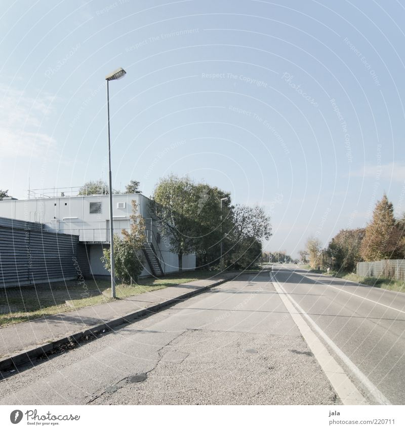 sonntags Umwelt Pflanze Baum Fabrik Bauwerk Architektur Verkehr Verkehrswege Straße Wege & Pfade blau grau leer ruhig Laternenpfahl Straßenbeleuchtung Farbfoto
