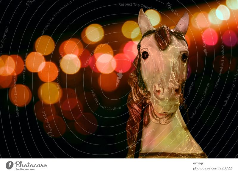 Karussell Tier dunkel Pferd Kitsch Kindheit Jahrmarkt Skulptur Figur Lichtspiel Wunsch Erinnerung Bildausschnitt Kindheitserinnerung Lichtpunkt Blick