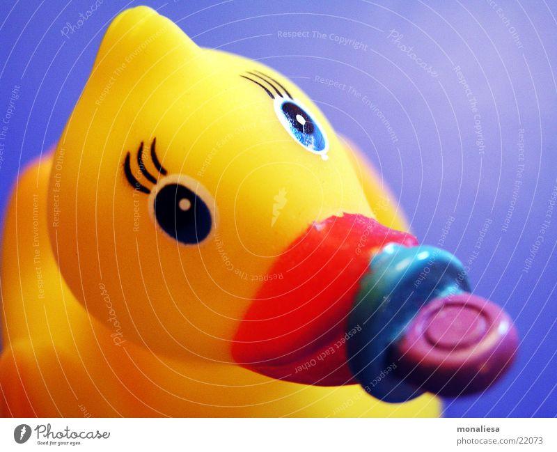 babyente2 Badeente Schnuller gelb Spielzeug Wimpern Schnabel Tier Makroaufnahme Nahaufnahme Ente Statue Auge Im Wasser treiben Schwimmen & Baden