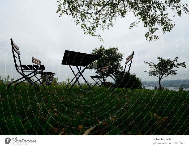 Alle zuhause ... Natur Landschaft Himmel Herbst schlechtes Wetter Baum Gras sitzen Traurigkeit Sehnsucht Heimweh Einsamkeit Vergänglichkeit Stuhl Tisch Farbfoto