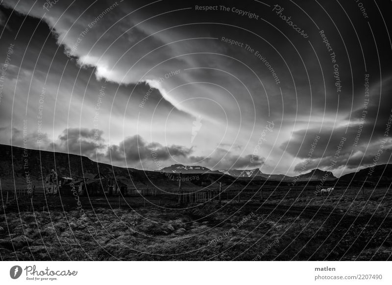 der Schimmel Natur Landschaft Pflanze Luft Himmel Wolken Horizont Frühling Wetter Sturm Gras Wiese Hügel Felsen Berge u. Gebirge Schneebedeckte Gipfel Gletscher