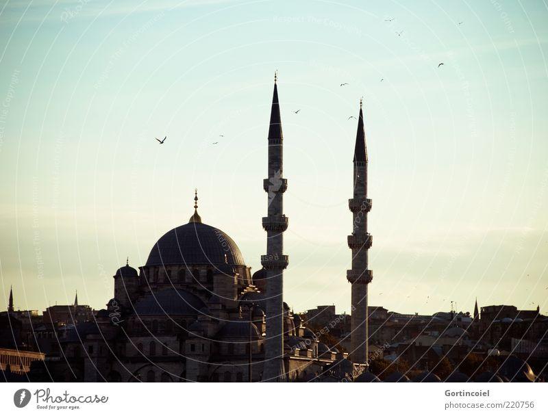 Yeni Camii Himmel Gebäude Architektur Sehenswürdigkeit historisch Religion & Glaube Islam Moschee Istanbul Türkei Minarett Kuppeldach Abendsonne Gotteshäuser