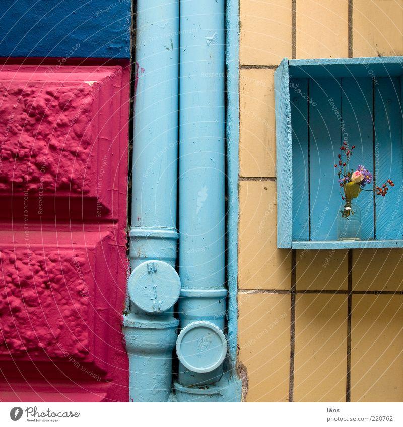 hundert - ab gehts Pflanze Haus Gebäude Fassade Fallrohr Stein Holz Stahl alt blau rosa Blume Blumenstrauß Blumenvase Dekoration & Verzierung Kiste