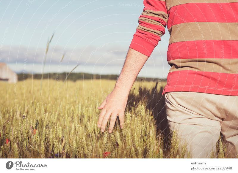 Hand und Weizen Lifestyle Ferien & Urlaub & Reisen Abenteuer Freiheit Mensch maskulin Junger Mann Jugendliche Erwachsene Rücken 1 30-45 Jahre Natur Landschaft