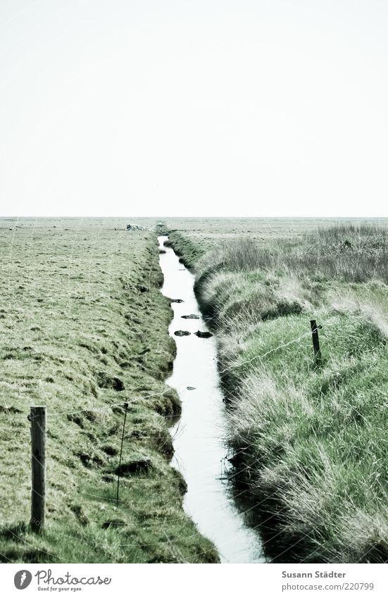 geteilt Wiese Feld Küste Flussufer Fjord Nordsee Insel Moor Sumpf Bach Blick Ferne Hooge Halligen Verbindung Teilung Trennung Außenaufnahme Menschenleer