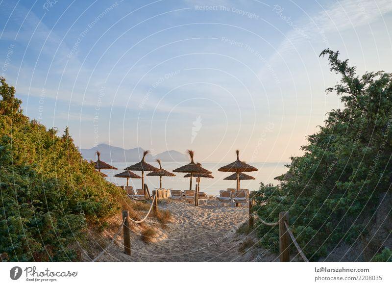 Tropischer Sonnenuntergang auf einem Erholungsortstrand exotisch Freizeit & Hobby Ferien & Urlaub & Reisen Tourismus Sommer Strand Meer Stuhl Sand Himmel Küste