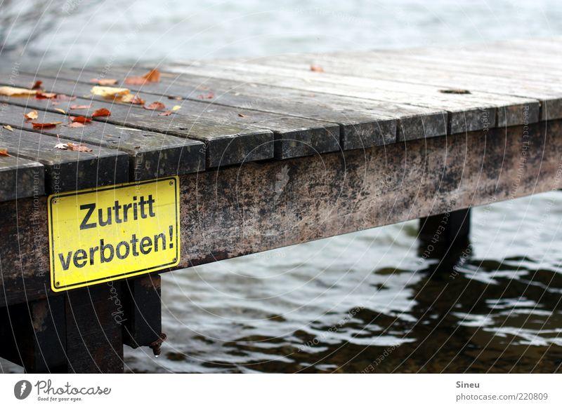 für Unbefugte Wasser kalt Herbst Schilder & Markierungen Steg Anlegestelle Verbote Herbstlaub Wasseroberfläche Zutritt verboten