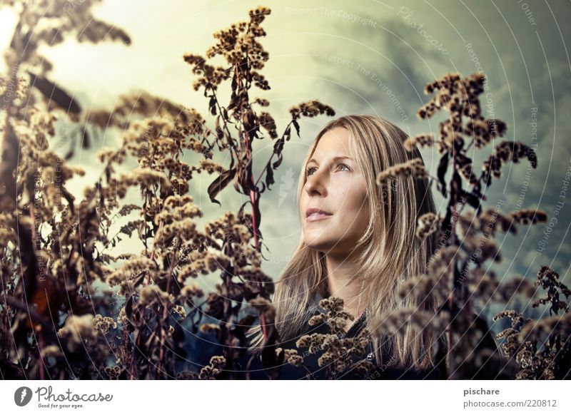 illuminiert Natur Jugendliche schön Himmel Gesicht Wolken feminin Gefühle Glück Zufriedenheit blond Erwachsene ästhetisch Sträucher beobachten exotisch