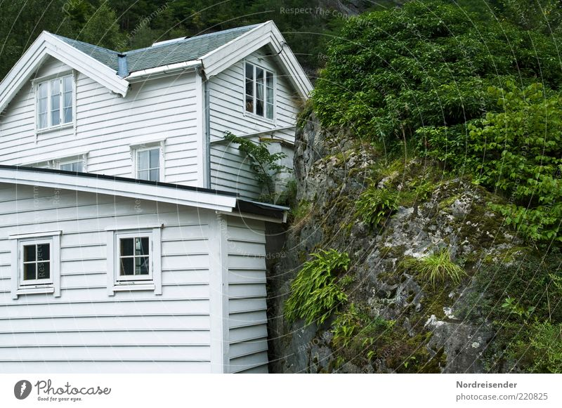 Haus und Hof Ferien & Urlaub & Reisen Natur Pflanze Sträucher Farn Hügel Felsen Einfamilienhaus Architektur Fassade Fenster Stein Holz Skandinavien Holzhaus