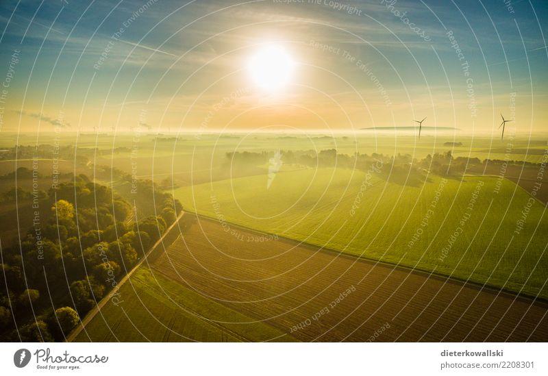 Landschaft am Morgen Umwelt Natur Pflanze Tier Sonnenaufgang Sonnenuntergang Sonnenlicht Klima Klimawandel Wetter Schönes Wetter schlechtes Wetter Nebel Feld