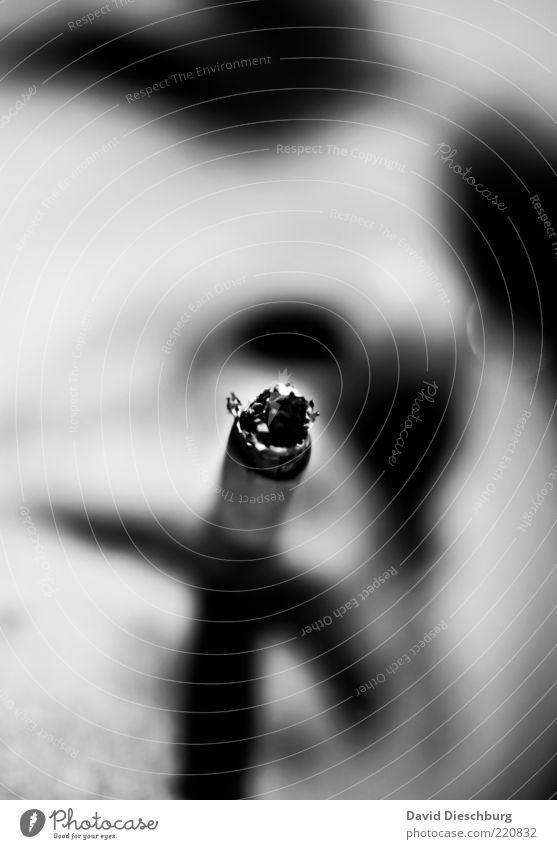 3 Jahre Photocase Mensch Mann Erwachsene Gesicht Kopf einzeln Rauchen Zigarette Sucht Laster ungesund Zigarettenasche Tabak Drogensucht Nikotin Schwarzweißfoto