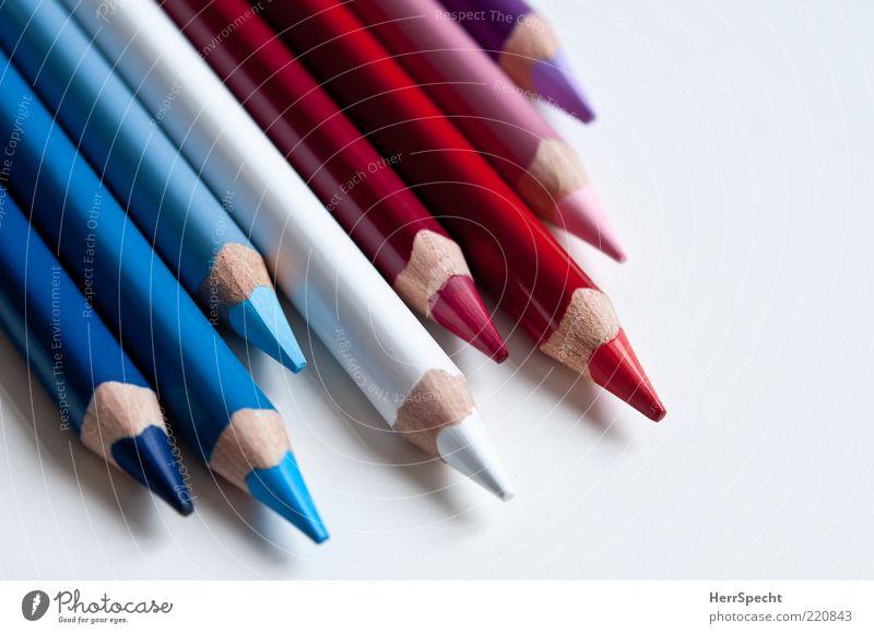 Blau Weiß Rot Schreibstift Holz schön neu Spitze blau violett rosa rot weiß Farbstift Farbe nebeneinander aufgereiht Farbfoto mehrfarbig Innenaufnahme