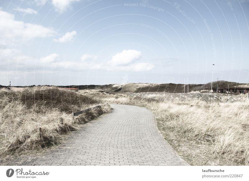 Auf einem nicht geraden Weg Natur grün blau Pflanze ruhig Wolken Ferne gelb Freiheit grau Stein Wege & Pfade Sand Landschaft frei Insel
