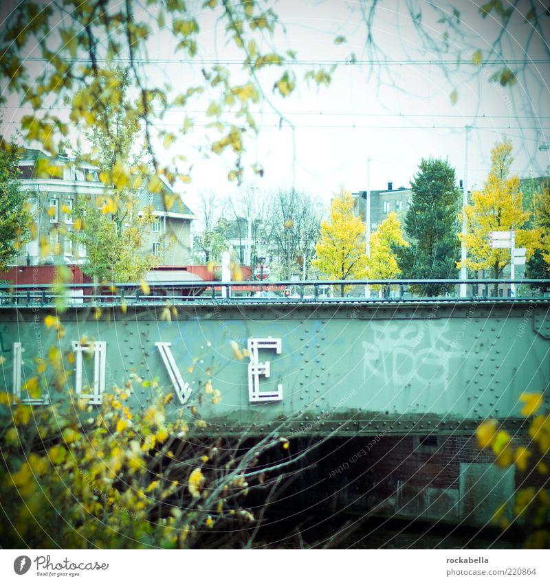 alles. Stadt Pflanze Baum Blatt Umwelt Wand Architektur Herbst Liebe Mauer Kunst Lifestyle Metall Design Idylle Schriftzeichen
