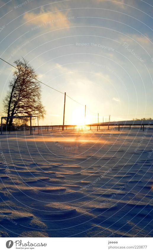 Frostiger Sonnenaufgang Natur Himmel Baum blau Winter Ferne Schnee Landschaft Eis glänzend gold Horizont Alpen leuchten