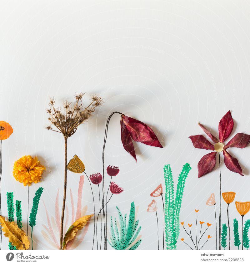 Flowers and watercolor Natur Pflanze schön grün weiß rot Blatt Wärme gelb Herbst natürlich feminin Freizeit & Hobby wild leuchten träumen