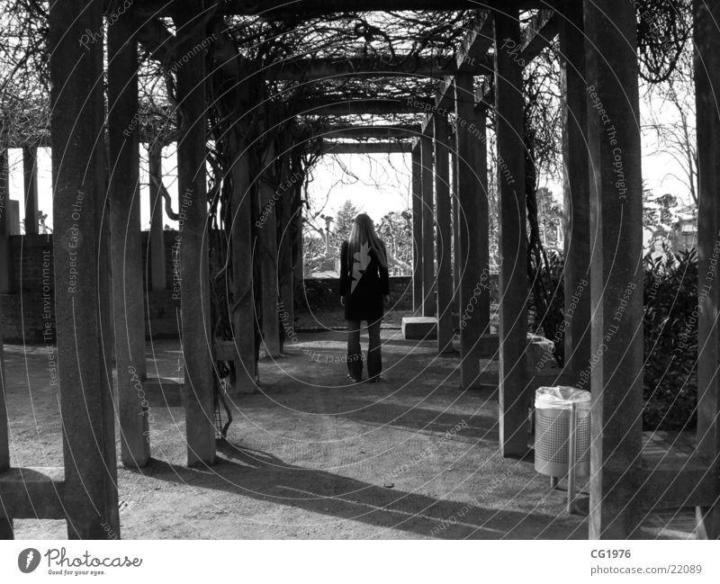 Träumerei im Wintergarten Frau Park träumen Garten