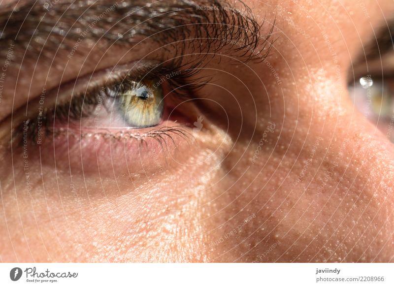 Nahaufnahme geschossen vom Auge des Mannes schön Mensch Erwachsene blau grün schließen nach oben Sehvermögen Regenbogenhaut Augenbraue Aussicht Pupille Farbfoto