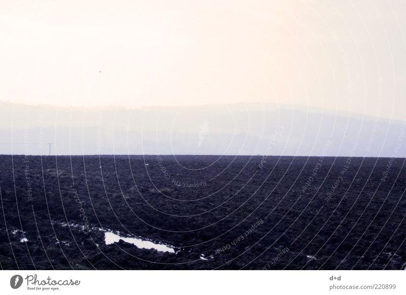 ___ Erde Feld Horizont Einsamkeit leer verloren Freiheit Unendlichkeit trist schwarz Brachland pflügen Landwirtschaft Textfreiraum oben kahl Aussaat Bodenbelag