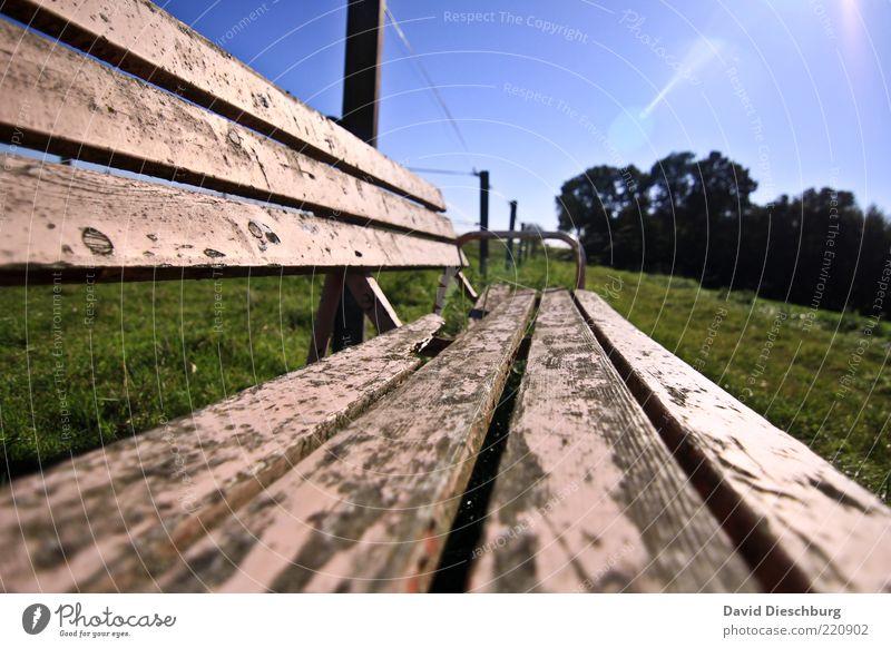 Setz dich und genieße... Natur Pflanze Wolkenloser Himmel Sommer Schönes Wetter Baum Gras Wiese blau grün Bank Holz alt Erholung ruhig Lack morsch Farbfoto