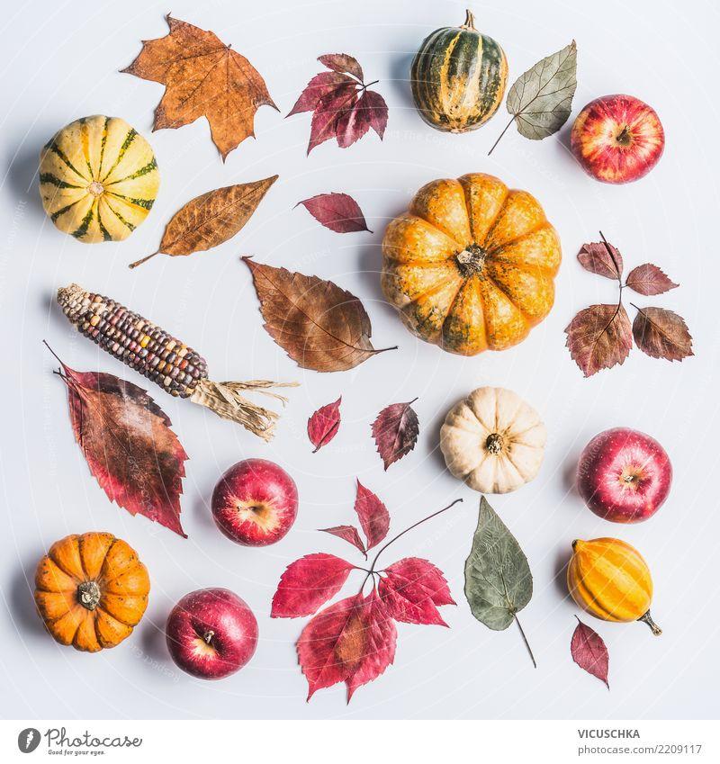 Herbst Composing mit Kürbis,Äpfel und Laub Gemüse Apfel Lifestyle Stil Design Erntedankfest Halloween Natur Blatt Dekoration & Verzierung Zeichen Ornament