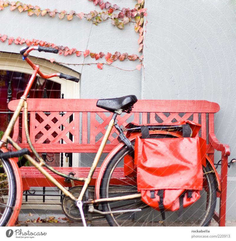 amsterdam color profiles. Fahrradtour Verkehrsmittel Fahrzeug ästhetisch rot Mobilität Bank Herbst Herbstlaub herbstlich Satteltaschen Farbfoto Außenaufnahme