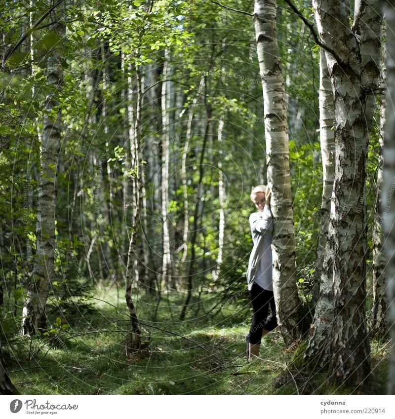 Ganz nah Mensch Natur Sommer ruhig Wald Erholung Leben Umwelt Freiheit Gefühle Gras träumen Zufriedenheit blond elegant stehen